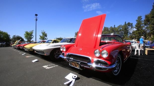 A row of Chevrolet Corvettes at the 2014 Greystone Concours