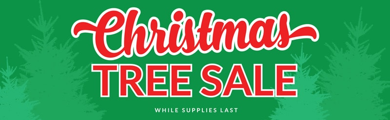 christmas tree sale in battle creek mi lakeview ford lincoln and harper creek optimist club. Black Bedroom Furniture Sets. Home Design Ideas