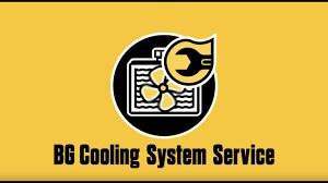 BG Cooling System Flush