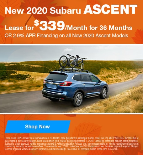 New 2020 Subaru Ascent - November