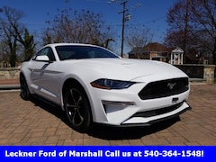 New 2019 Ford Mustang Ecoboost Coupe FM167559 in Marshall, VA