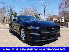 New 2019 Ford Mustang Ecoboost Coupe FM176470 in Marshall, VA