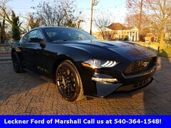 New 2019 Ford Mustang Ecoboost Coupe FM174326 in Marshall, VA