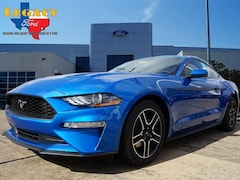 New 2019 Ford Mustang Ecoboost Premium Coupe 190006 for sale in Rosenberg, TX