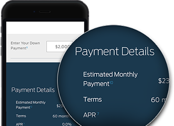 Payment Details on an iPhone app