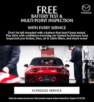 Free Battery Test & Multi Point Inspection With Every Service