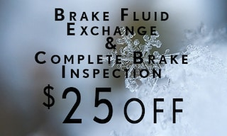 Brake Fluid Exchange & Inspection