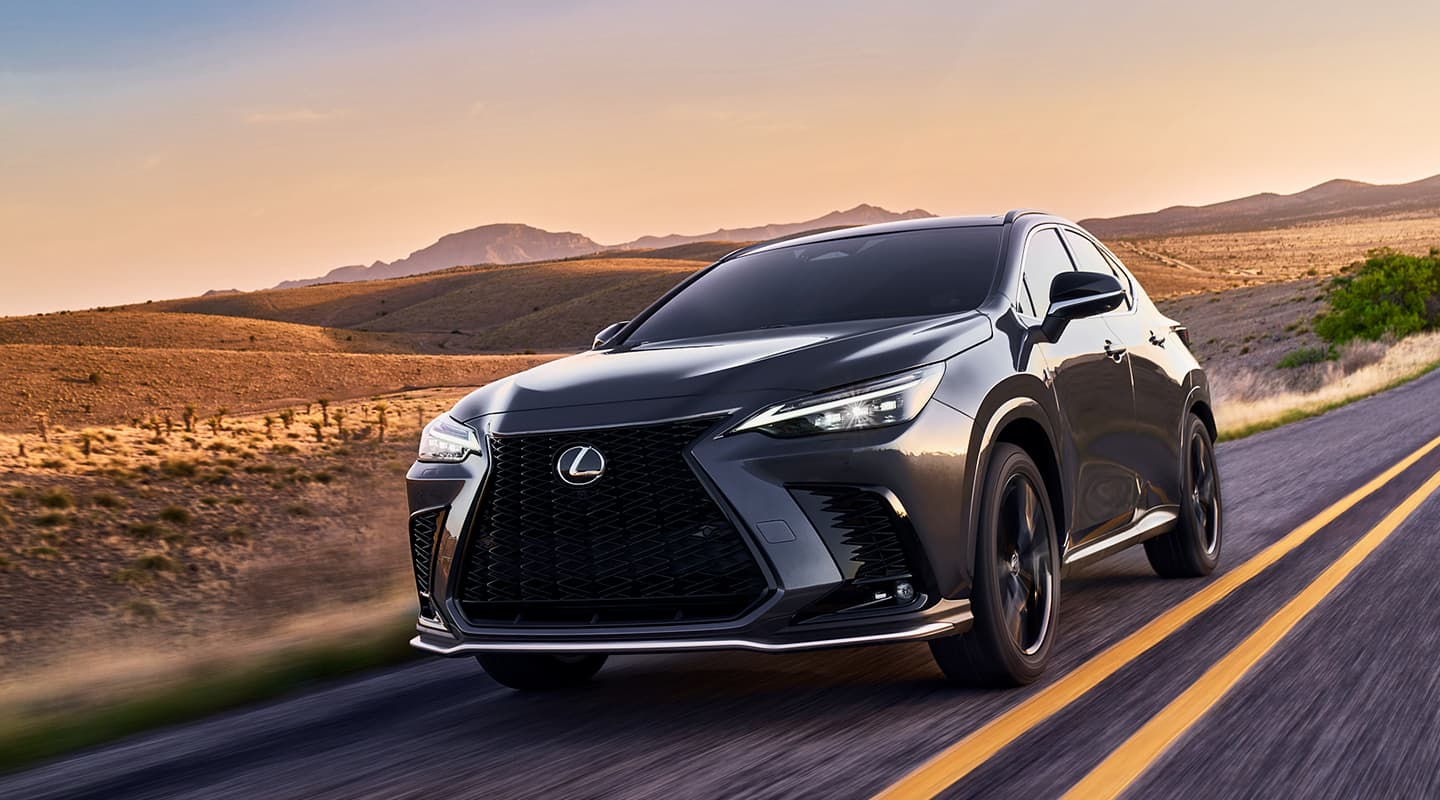 The All-New Lexus NX in Metairie, LA
