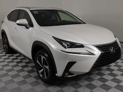 2021 LEXUS NX 300 Luxury AWD SUV