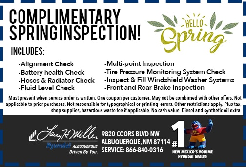 Spring inspection special