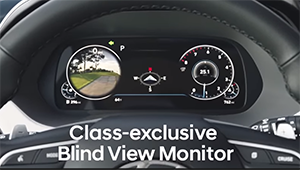 class exclusive blind view monitor