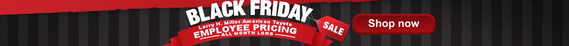 Black Friday Employee Pricing Event
