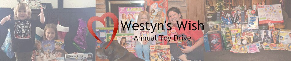 Westyn's Annual Toy Drive Colorado Springs
