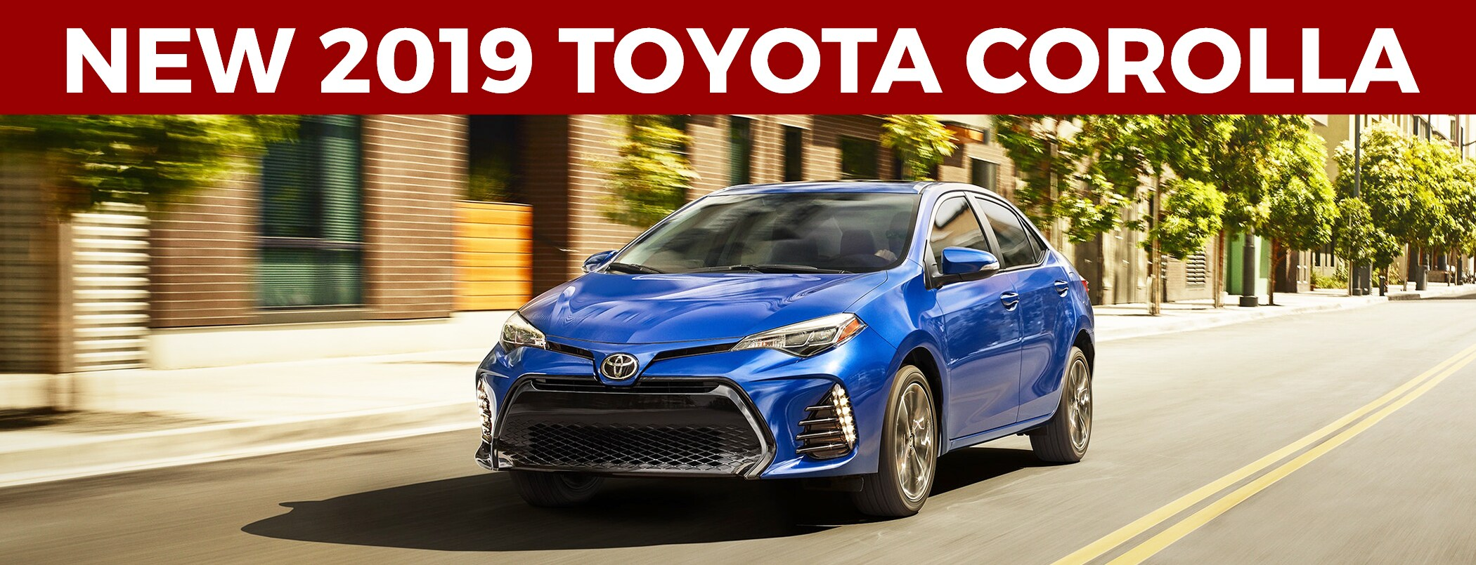 2019 Toyota Corolla Review Murray