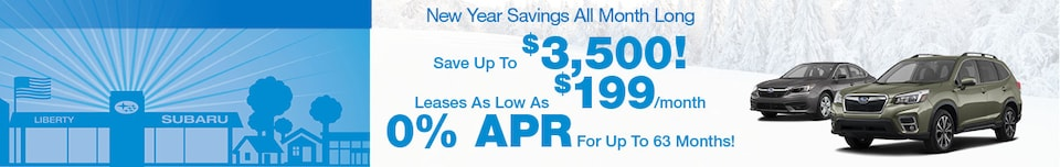 New Year Savings All Month Long