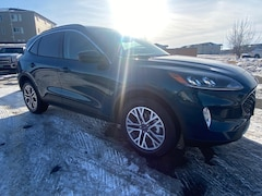 New 2020 Ford Escape SEL SUV Grand Forks, ND