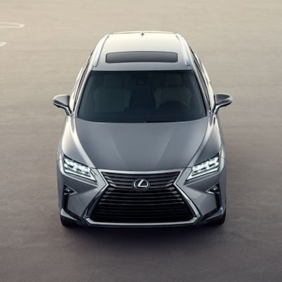 2019 Lexus RX Safety Options