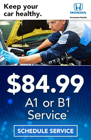 A1 or B1 Service Special in Livermore CA