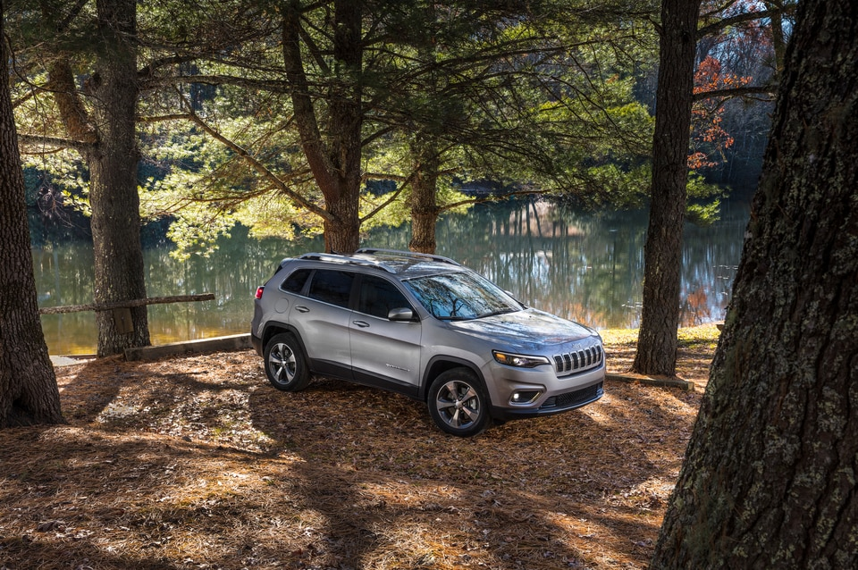 2020 Jeep Cherokee in Livonia