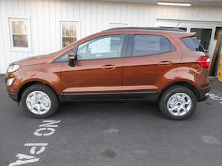 2019 Ford EcoSport SE AWD SE 4WD