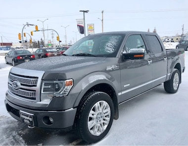 2013 Ford F-150 PLATINUM Super Crew