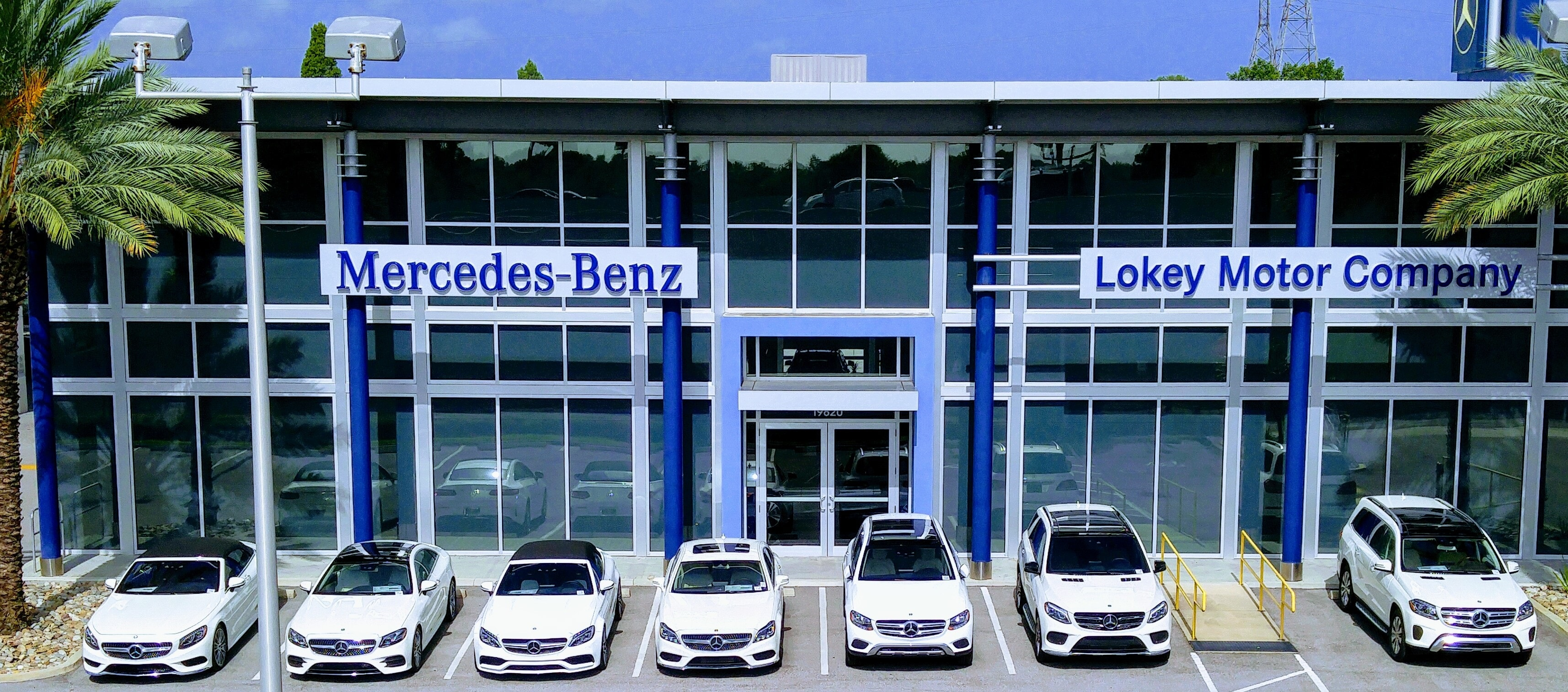 About lokey motor co new mercedes benz and used car for Mercedes benz dealer in tampa fl