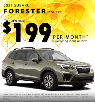 'Fall in Love' Forester Special