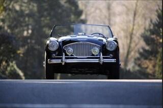 1955 Austin-Healey 100 100 BN1