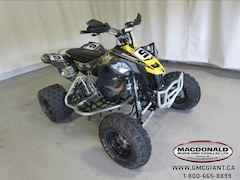 2014 CAN-AM DS 450