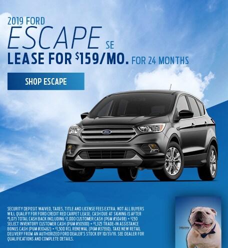 New 2019 Ford Escape SE   Lease