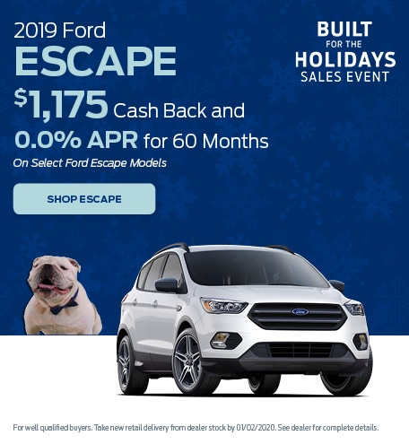 New 2019 Ford Escape | APR
