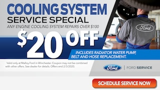 Service - Cooling System Special