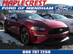 2019 Ford Mustang EcoBoost Coupe 1FA6P8TH6K5141236