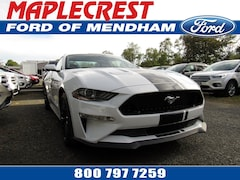 2019 Ford Mustang GT Premium Coupe 1FA6P8CF0K5122017