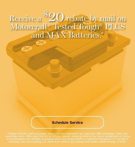 Battery Rebate Plus Batteries