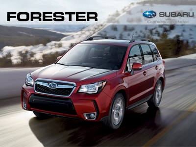 Mark Miller Subaru Southtowne >> Mark Miller Subaru | Salt Lake City Subaru Accessories