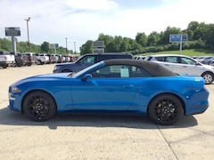 New 2019 Ford Mustang Ecoboost Convertible Convertible in Jackson, OH