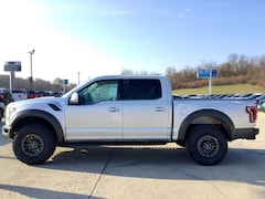 2019 Ford F-150 Raptor 4WD Supercrew 5.5 Box Crew Cab Pickup For Sale In Jackson, Ohio