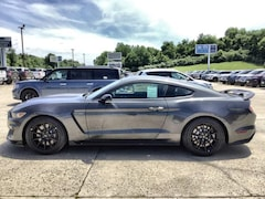 New 2019 Ford Mustang Shelby GT350 Fastback Car in Jackson, OH
