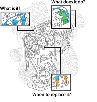Service Toyota Parts Focus