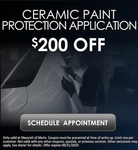 Ceramic Paint Protection Application Special