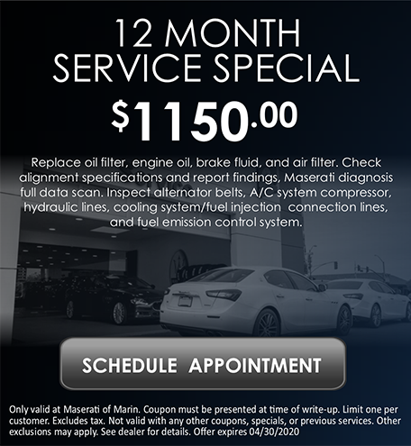 12-Month Service Special