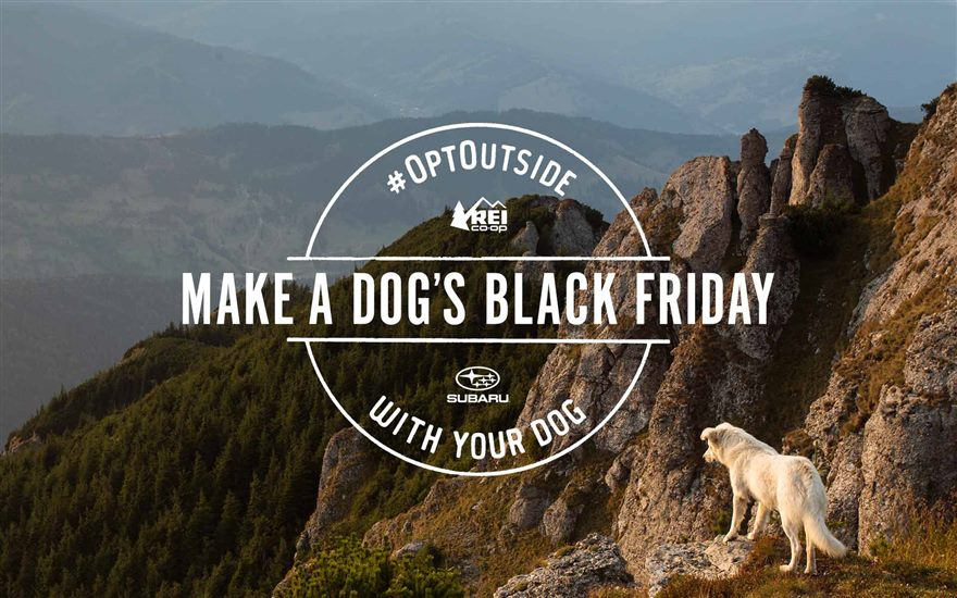 Subaru and REI Make a Dog's Black Friday near Orlando