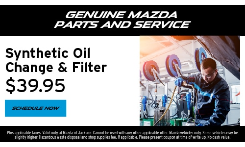 Synthetic Oil Change & Filter