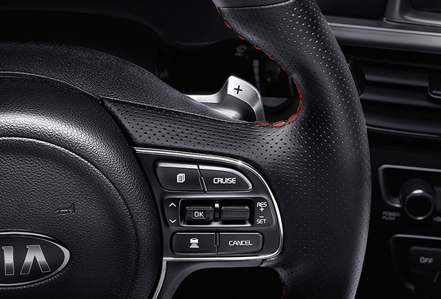 Steering wheel paddle shifters