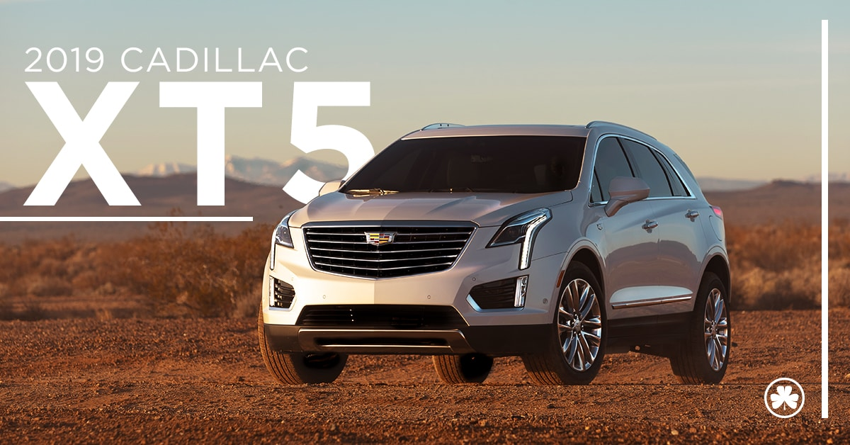 2019 white Cadillac XT5 parked out in the open with mountains in the back