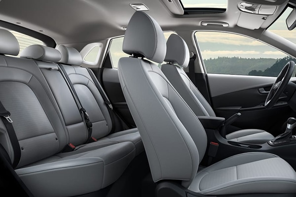 2019 Hyundai Kona Limited and Ultimate Gray Interior