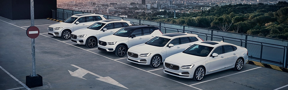 Volvo Model Lineup