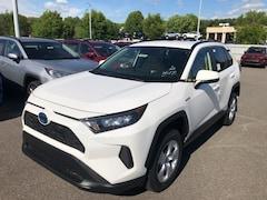 2019 Toyota RAV4 Hybrid LE SUV
