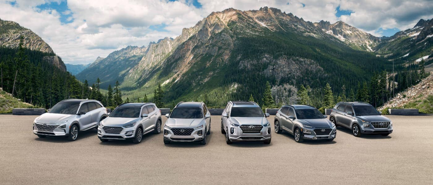 Hyundai Vehicles Linedup in the Mountains